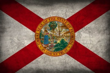 grunge_florida_flag_by_elthalen-d4beol4